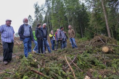 Unser Wald in der Klimakrise - Vortrag @ Kulturbahnhof